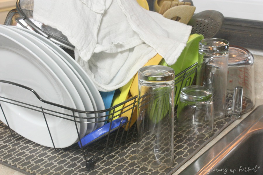 My Second Least-Favorite Household Chore | Growing Up Herbal | This is why we sometimes wear wrinkled clothes. What's your least favorite household chore?