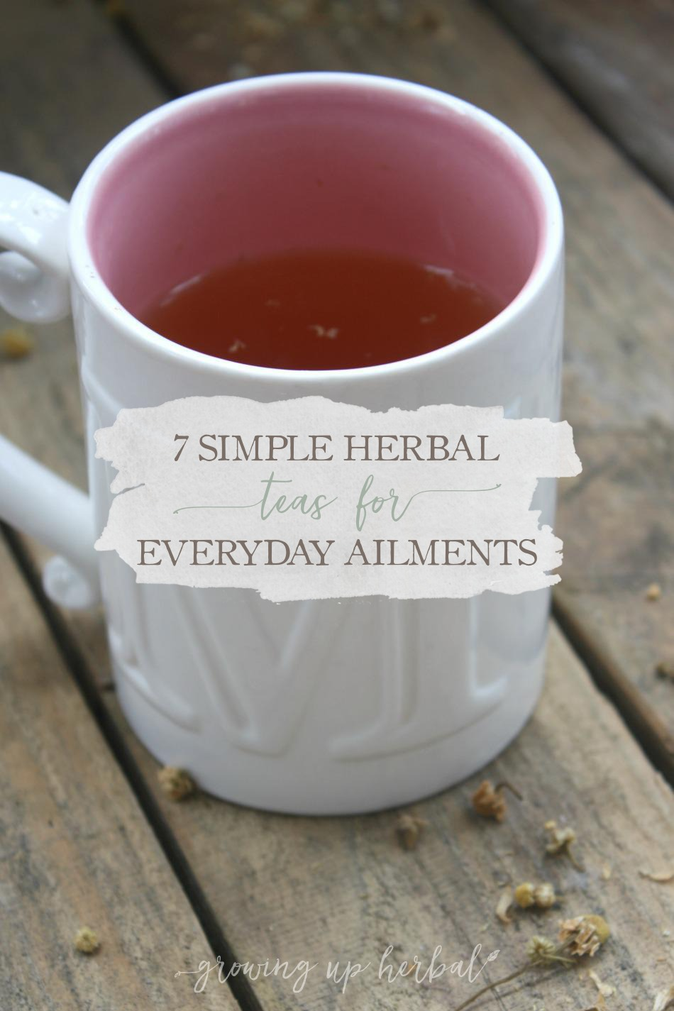 7 Simple Herbal Teas For Everyday Ailments | Growing Up Herbal | Here are 7 simple teas you can drink, enjoy, and make scent memories with.