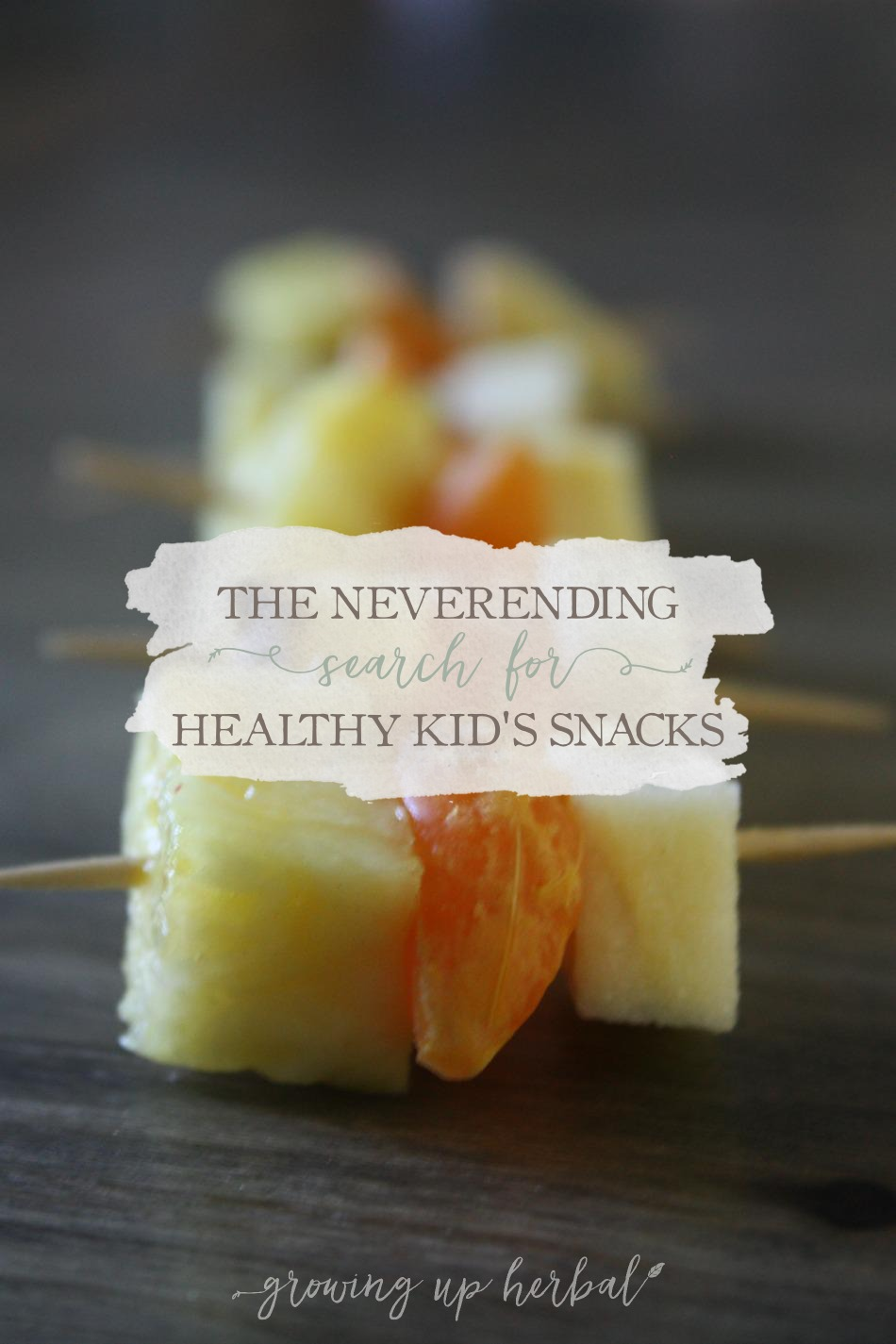 Meal Planning Monday: The Never-Ending Search For Healthy Kids Snacks | Growing Up Herbal | See how I've bridged the gap between kids snacks that are healthy and convenient.