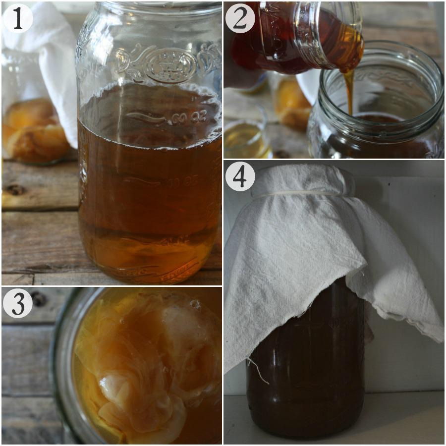 """Why I Switched From Regular Kombucha To Jun Kombucha (+ How To Make It)   Growing Up Herbal   Have you heard of """"jun kombucha?"""" Here's why I'm drinking it now + a tutorial for how to make it!"""