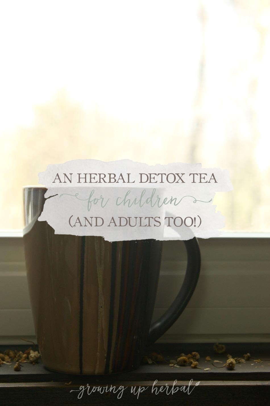 An Herbal Detox Tea For Children (And Adults Too!) | Growing Up Herbal | Here's a gentle but effective herbal detox tea that's a perfect fit for kids.