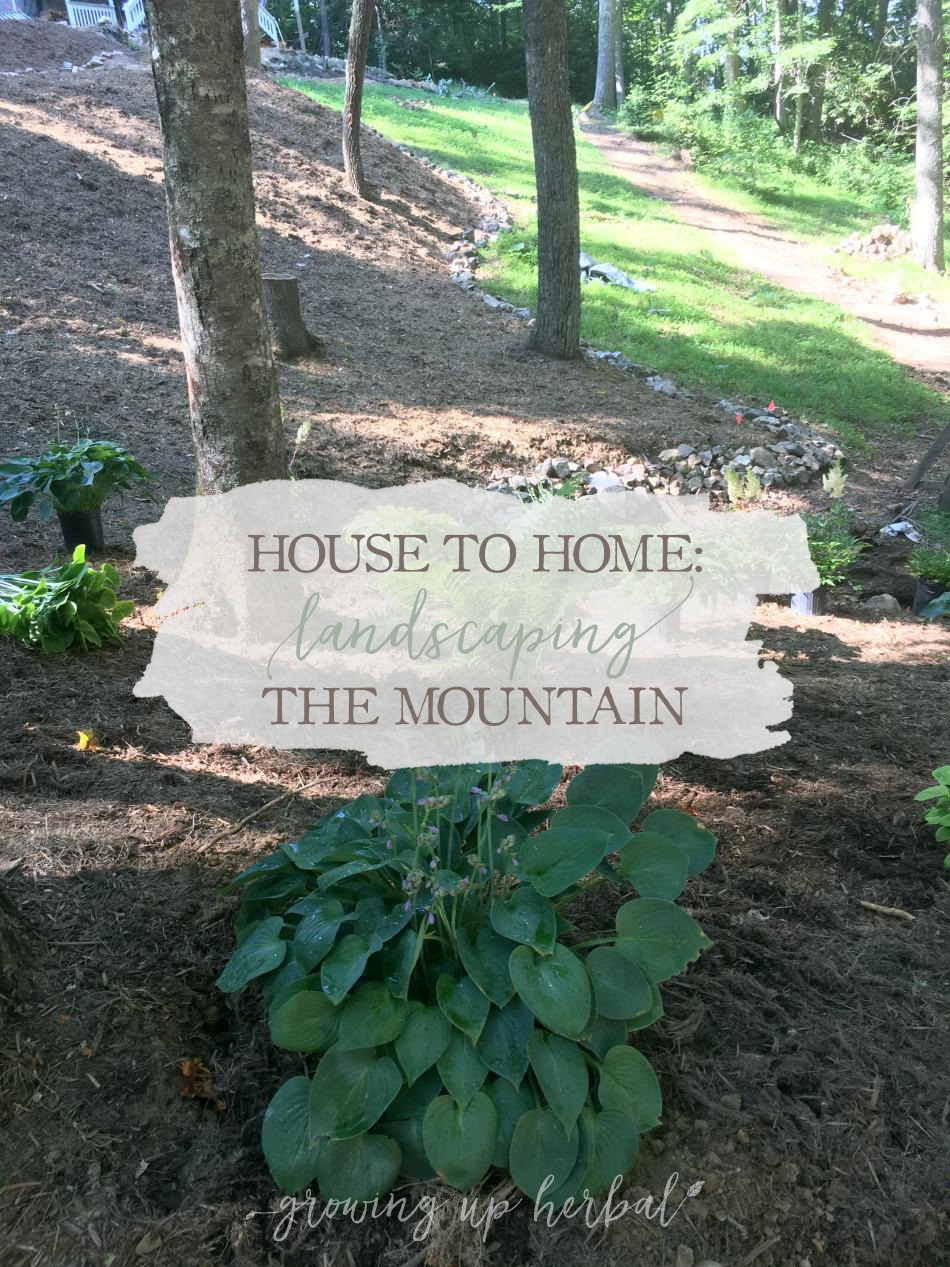 House To Home: Landscaping The Mountain | Growing Up Herbal | Our summer project is landscaping our mountain. Come see what we've been up to!