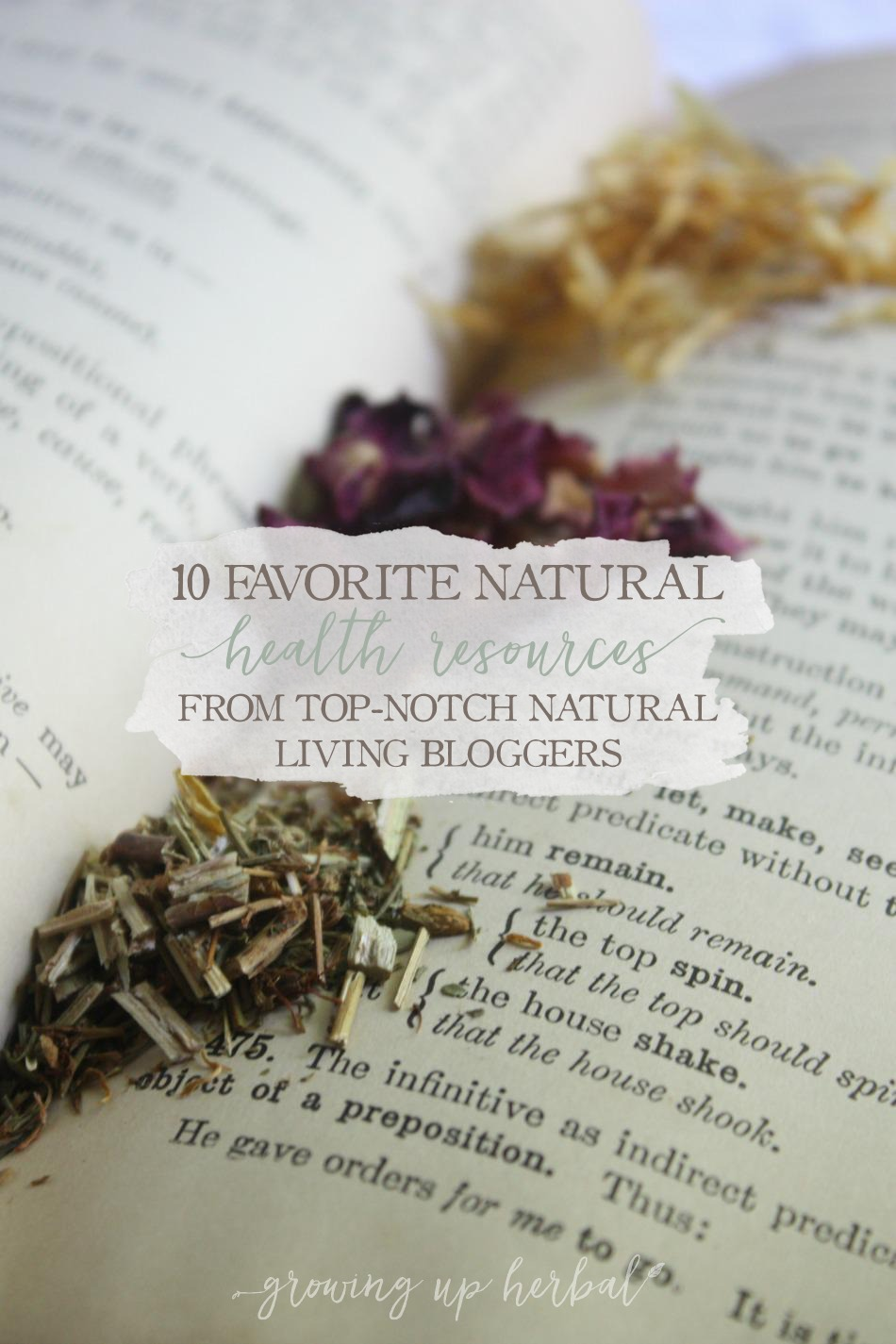 10 Favorite Natural Health Resources From Top-Notch Natural Living Bloggers | Growing Up Herbal | Here are some of my favorite NEW natural health resources from some of the webs best!