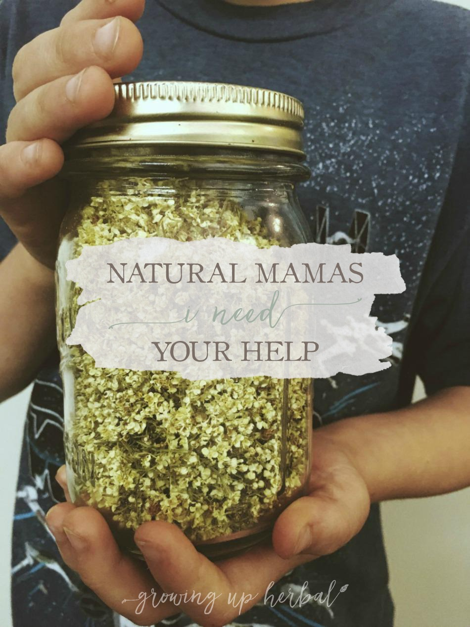 Natural Mamas - I Need Your Help! | Growing Up Herbal | Can you take 4 minutes of your time to tell me what you'd like to see here on GrowingUpHerbal.com? I'd appreciate it so much!