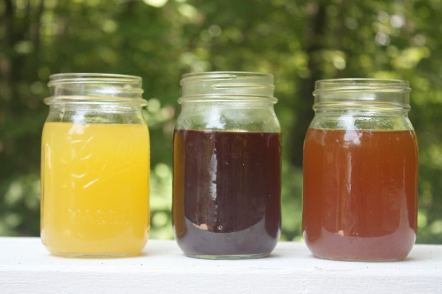 3 Homemade Electrolyte Drink Recipes Your Kids Will Love | Growing Up Herbal | Try these