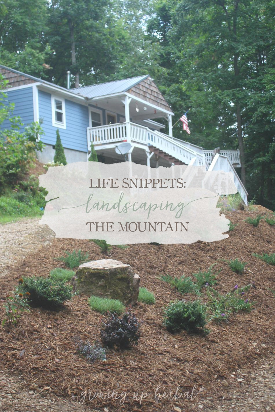 Life Snippets: Landscaping The Mountain (Video) | Growing Up Herbal | I'm sharing our updates on landscaping our mountain with you today.