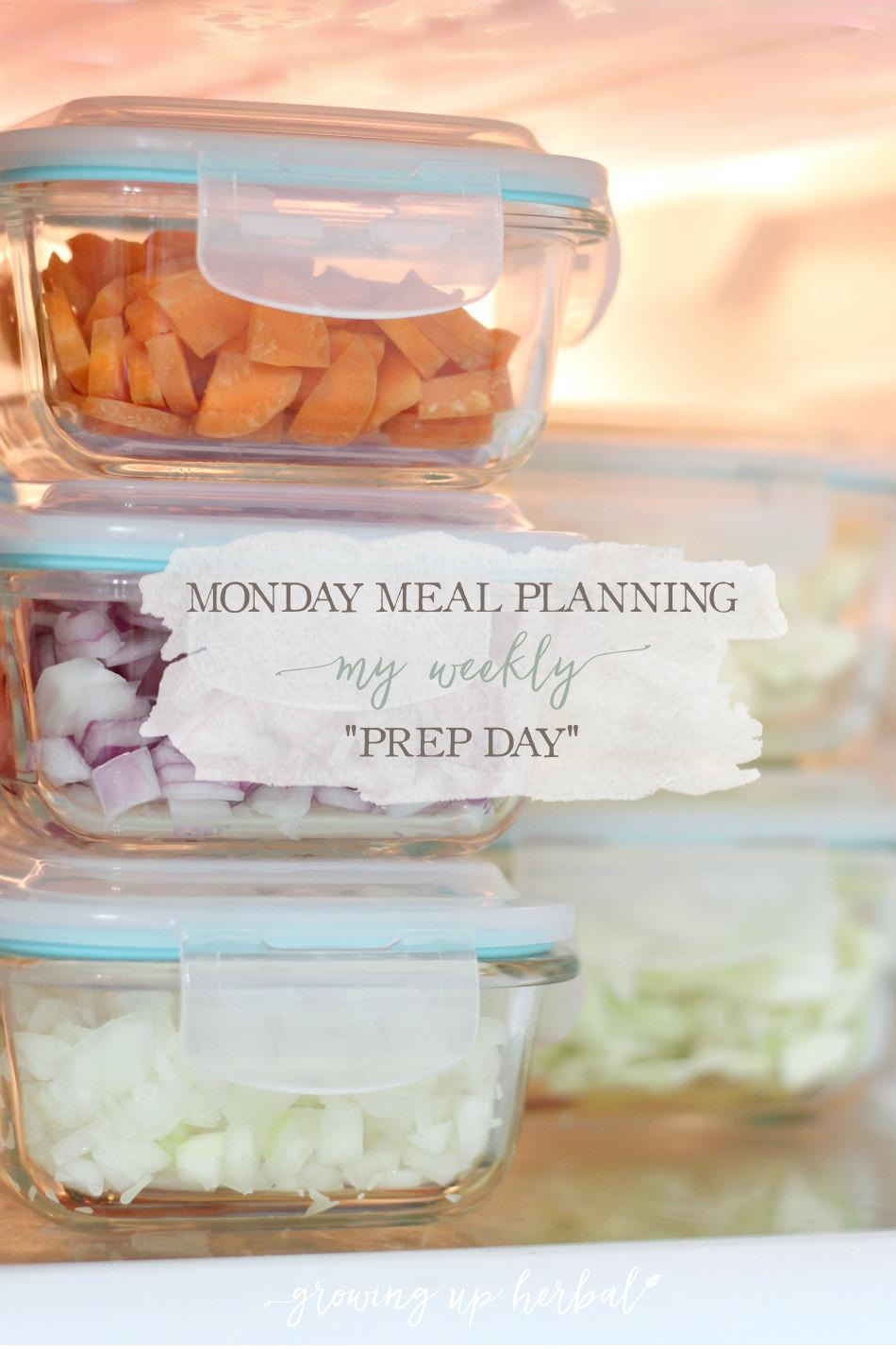 "Meal Planning Monday: My Weekly ""Prep Day"" 