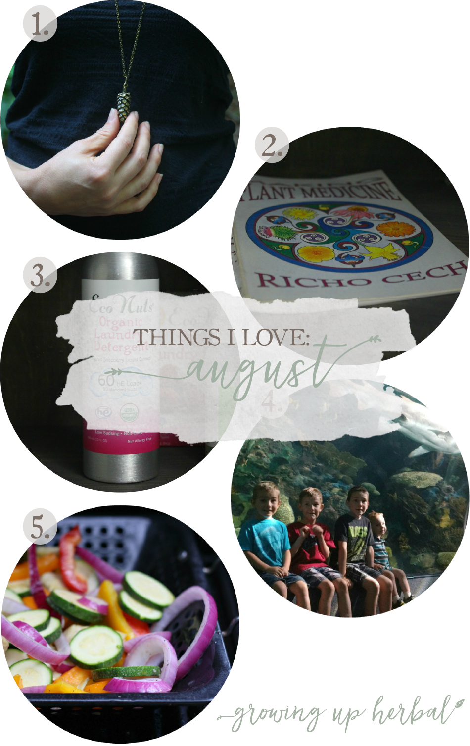 Things I Love: August | Growing Up Herbal | Here are 5 things I've loved in August 2016!