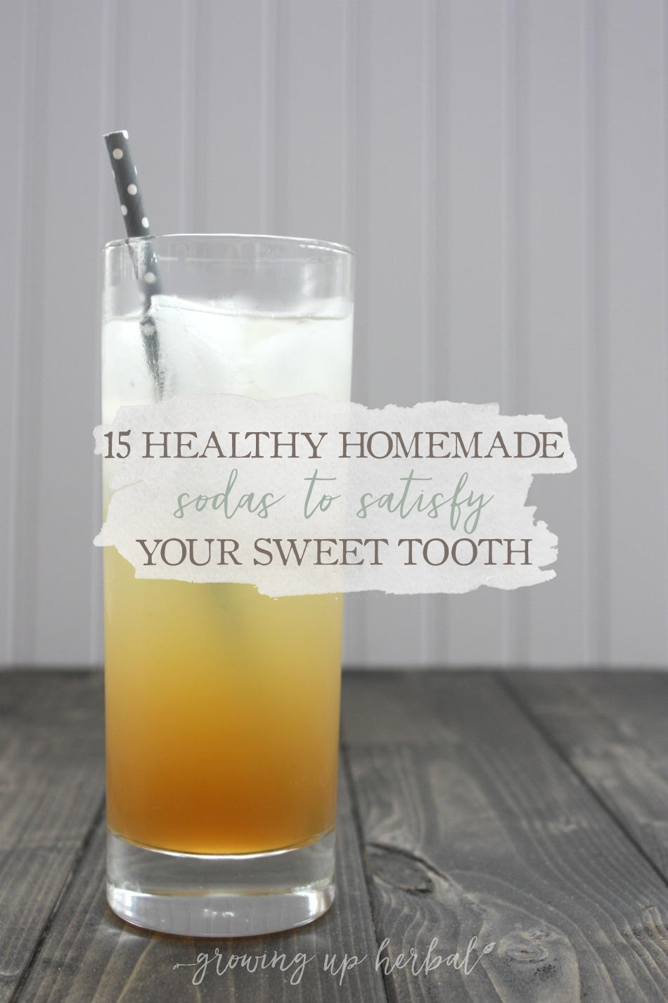 15 Healthy Homemade Sodas to Satisfy Your Sweet Tooth | Growing Up Herbal | If you're looking to make the switch from unhealthy sodas to healthier versions, look no more. Here are 15 healthy homemade sodas to get you started!
