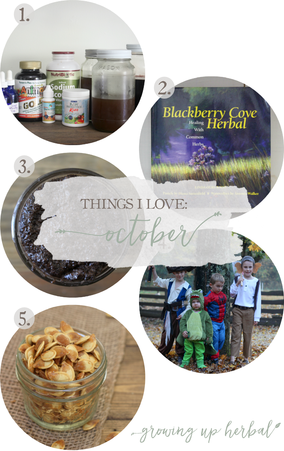 Things I Love: October 2016 | Growing Up Herbal | Here are 5 things I've loved in October 2016!