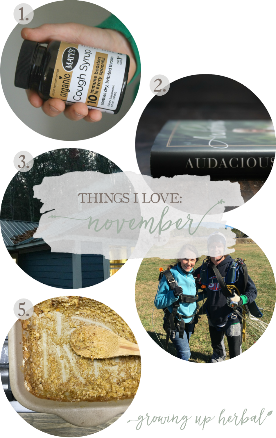 Things I Love: November 2016 | Growing Up Herbal | Here's a list of some of my favorite natural living products, foods, books, memories, and more from November 2016.