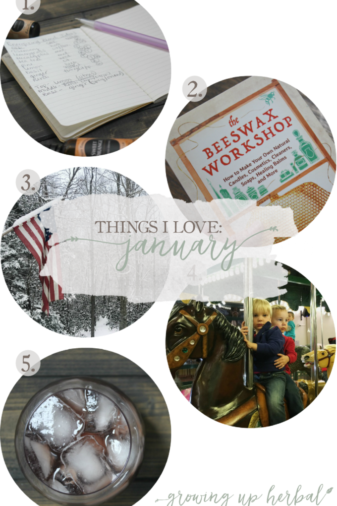 Things I Love: January 2017   Growing Up Herbal   I'm sharing some more of my favorite things from January 2017... including essential oil blends, using leftover herbs from elderberry syrup, a blogger friends newest book, and more. Check it out!