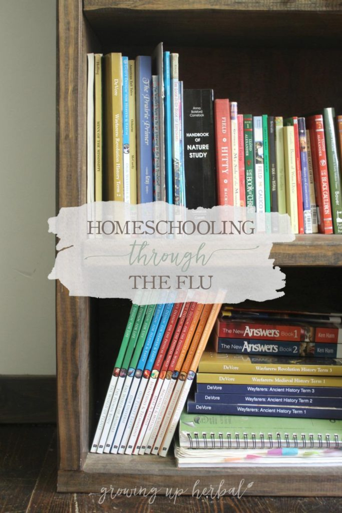 Homeschooling Through The Flu | Growing Up Herbal | Here are some things to do to help your family recover while homeschooling through the flu.