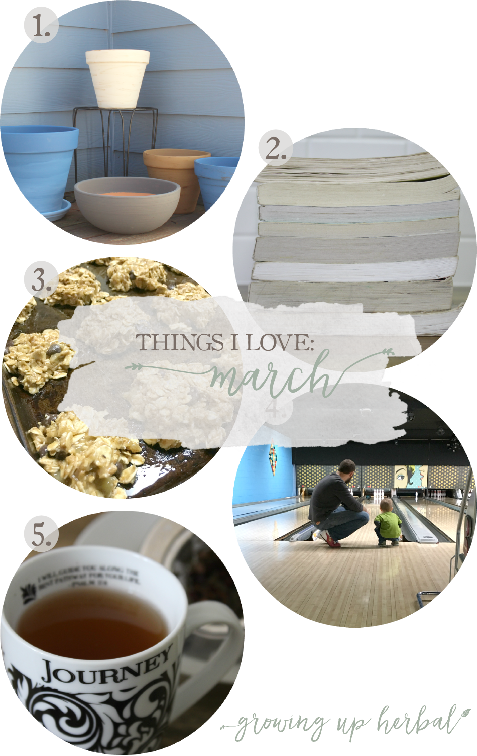 Things I Love: March 2017 | Growing Up Herbal | Some things I loved in March were an herbal tea for healthy veins, starting my 2017 reading challenge, celebrating St. Patrick's Day, healthy breakfast cookies, and painting planters for spring plants! Come check it out!
