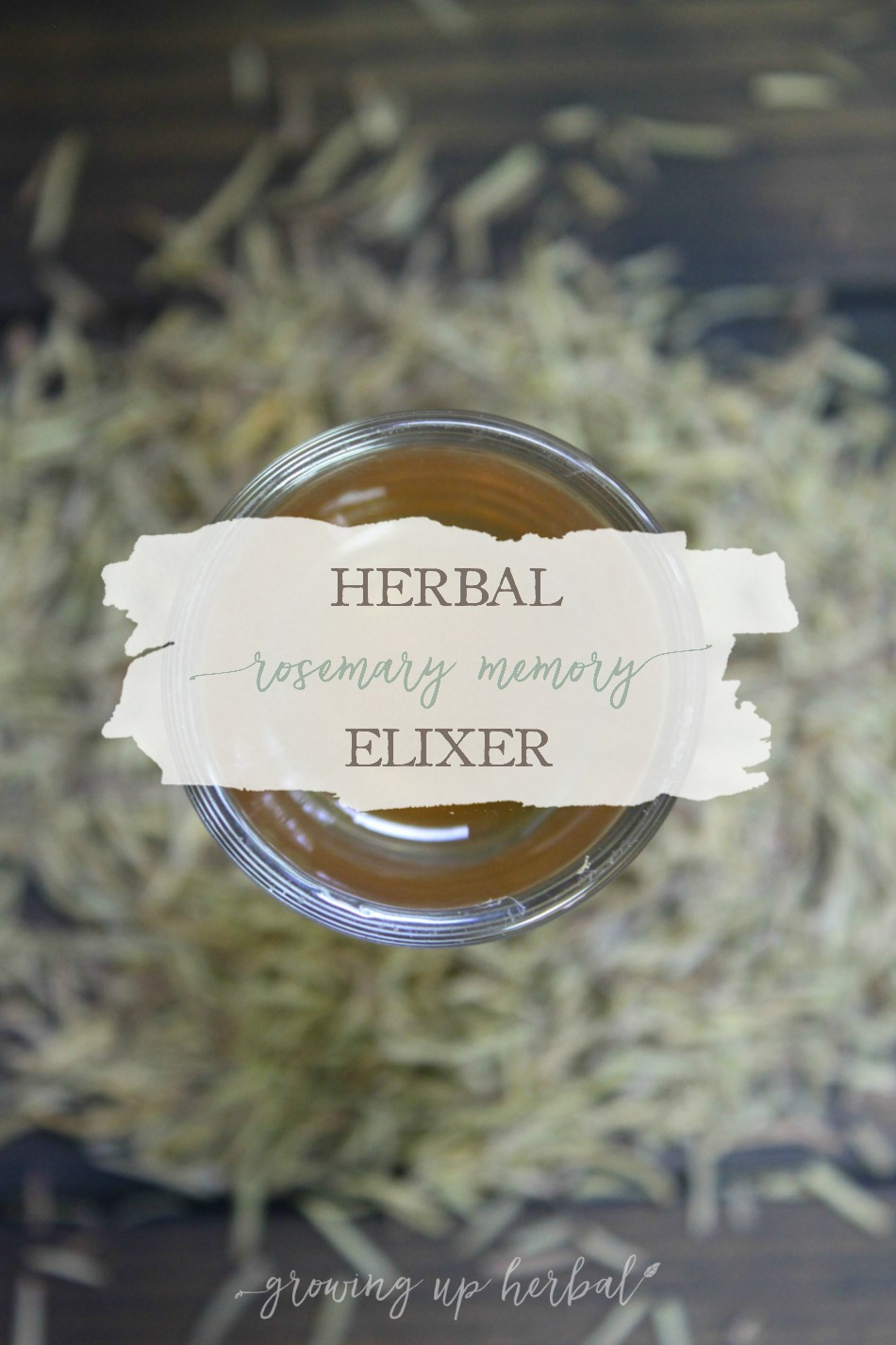 Herbal Rosemary Memory Elixir | Growing Up Herbal | Support memory health with herbs. This rosemary memory elixir is a great, tasty way to get you started!