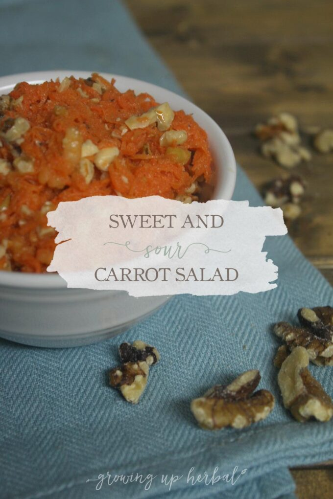 Sweet And Sour Carrot Salad   Growing Up Herbal   If you struggle with getting your kids to eat veggies, you'll love this delicious carrot salad recipe.