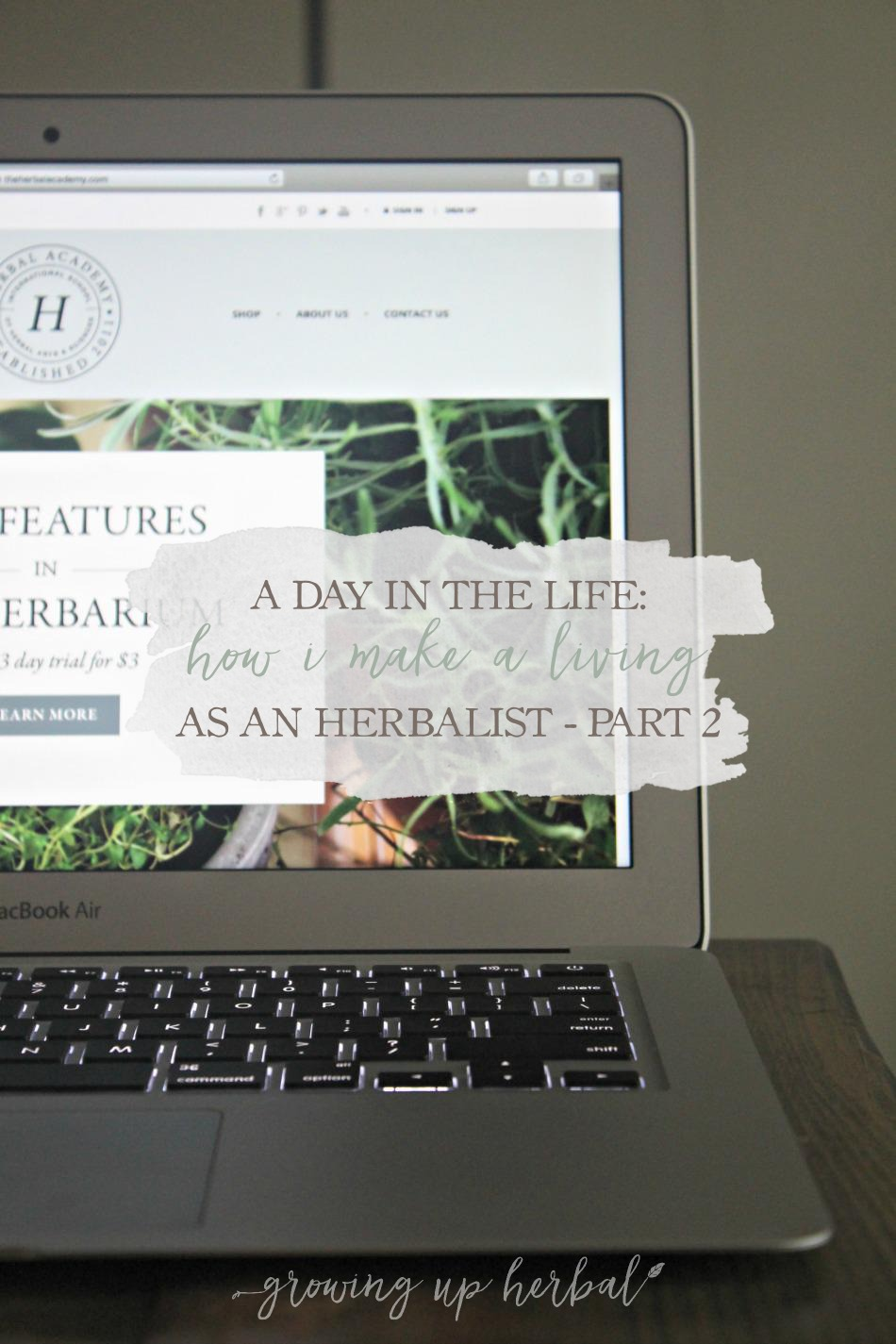 A Day In The Life: How I Make A Living As An Herbalist - Part 2 | Growing Up Herbal | Ever wondered what it's like to work as an herbalist? If so, let me share my personal journey with you, including the newest adventure in my herbal career!