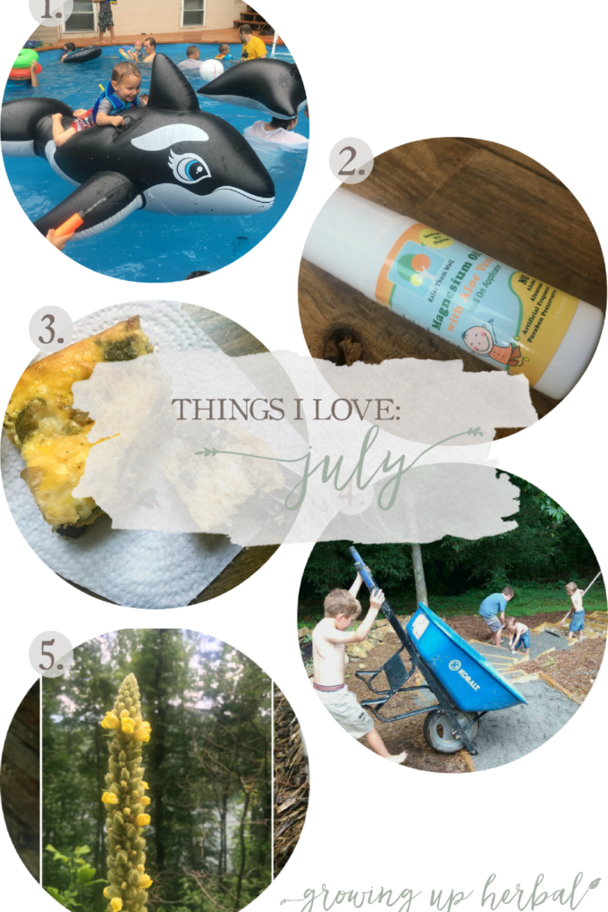 Things I Love: July 2017 | Growing Up Herbal | Cousin's Party 2017, summer foraging, breakfast recipes, and more. Here are 5 of my favorite things from this past month!