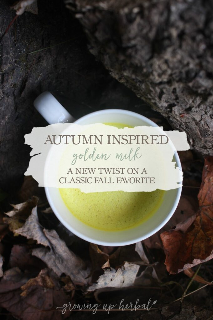 Autumn Inspired Golden Milk: A New Fall Twist On A Classic Favorite | Growing Up Herbal | If you enjoy fall flavors like we do, you will love this delicious autumn inspired golden milk recipe! It's a new twist on a favorite classic recipe.