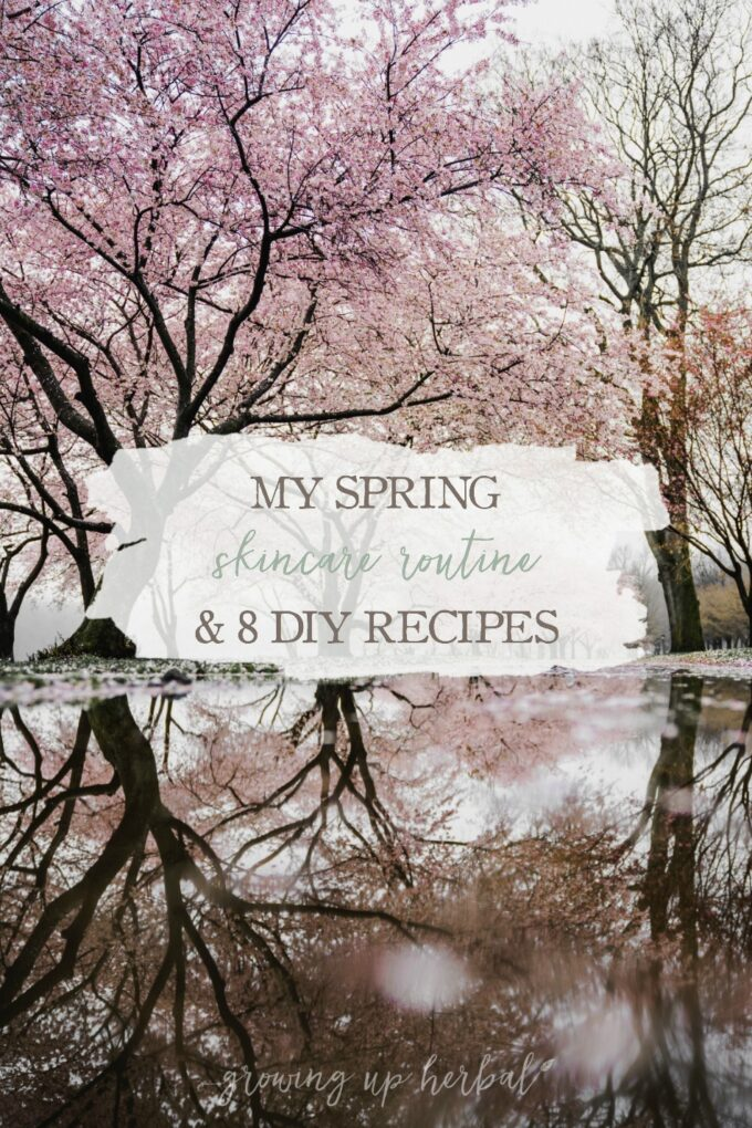 My Spring Skincare Routine & 8 DIY Recipes | Growing Up Herbal | Seasons change and so do skincare routines. Here are 8 DIY skin care recipes I'll be using to care for my skin this spring.