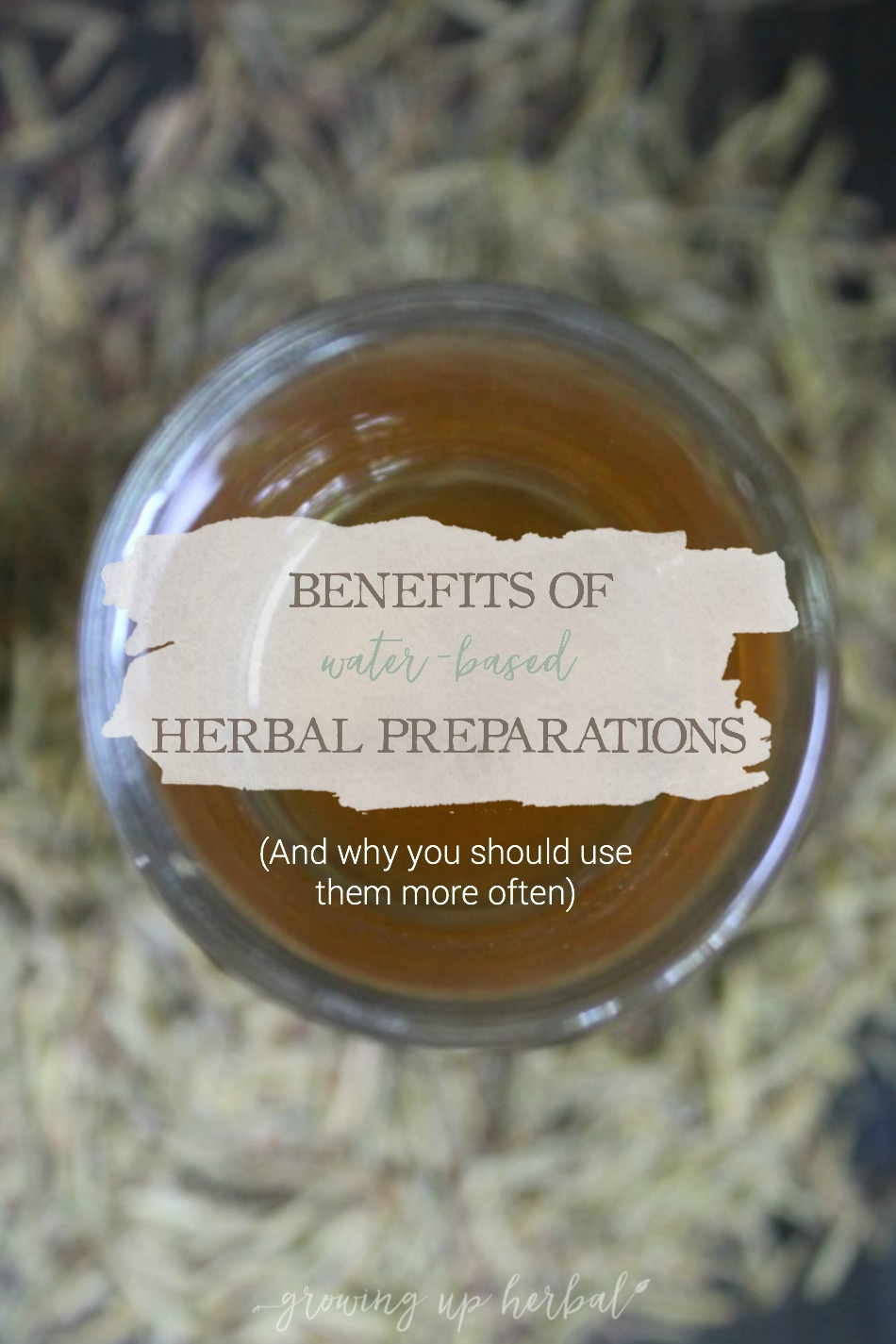 Benefits of Water-Based Herbal Preparations   Growing Up Herbal   Ever wondered what benefits you gain from teas, infusions, decoctions, and other water-based herbal preparations? This post explains it in simple terms!