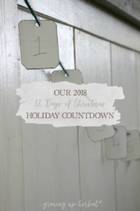 """Our 2018 """"12 Days of Christmas"""" Holiday Countdown 