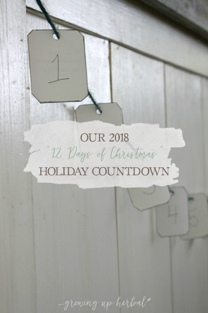 """Our 2018 """"12 Days of Christmas"""" Holiday Countdown   Growing Up Herbal   Checkout this 12 Days of Christmas holiday countdown, a shortened spinoff of a traditional Advent calendar. Learn how to make it and some example activities to include!"""