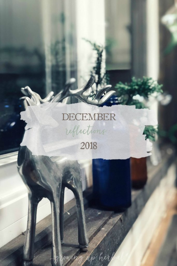 December Reflections: 2018 | Growing Up Herbal | It's the end of the year, and I'm pulling my year-end reflections out of my journal and sharing them with you today. Here's what 2018 has taught me.