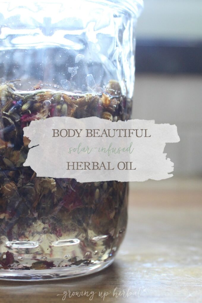 Beautiful Body Solar-Infused Herbal Oil | Growing Up Herbal | Nourish your skin with this easy-to-make all-purpose solar-infused herbal oil from my ebook, Making Herbal Infused Oils: The Ultimate How-To Guide.