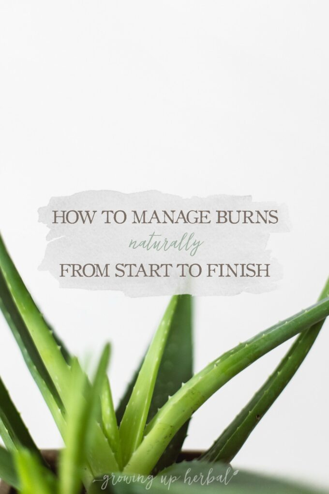 How To Manage Burns Naturally From Start To Finish | Growing Up Herbal | Learn some basic lifestyle and herbal suggestions you can use manage burns naturally the next time you experience a burn.
