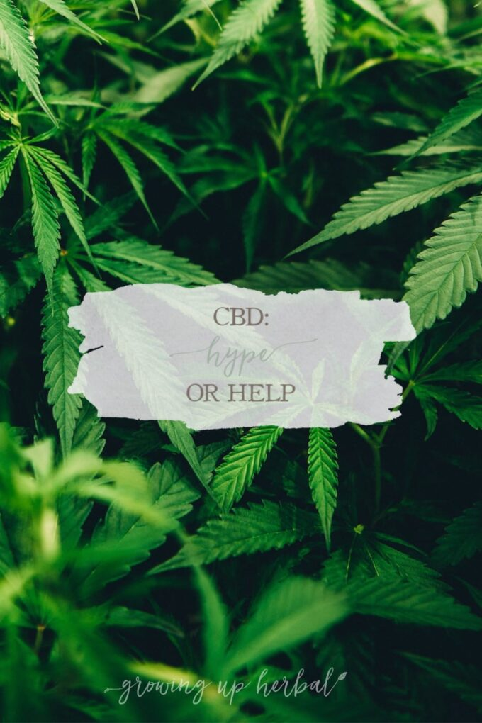 CBD: Hype or Help | Growing Up Herbal | I finally decided to dig into all the CBD hype that's going around and to see what I thought about Cannabis myself. Here's what I found out!