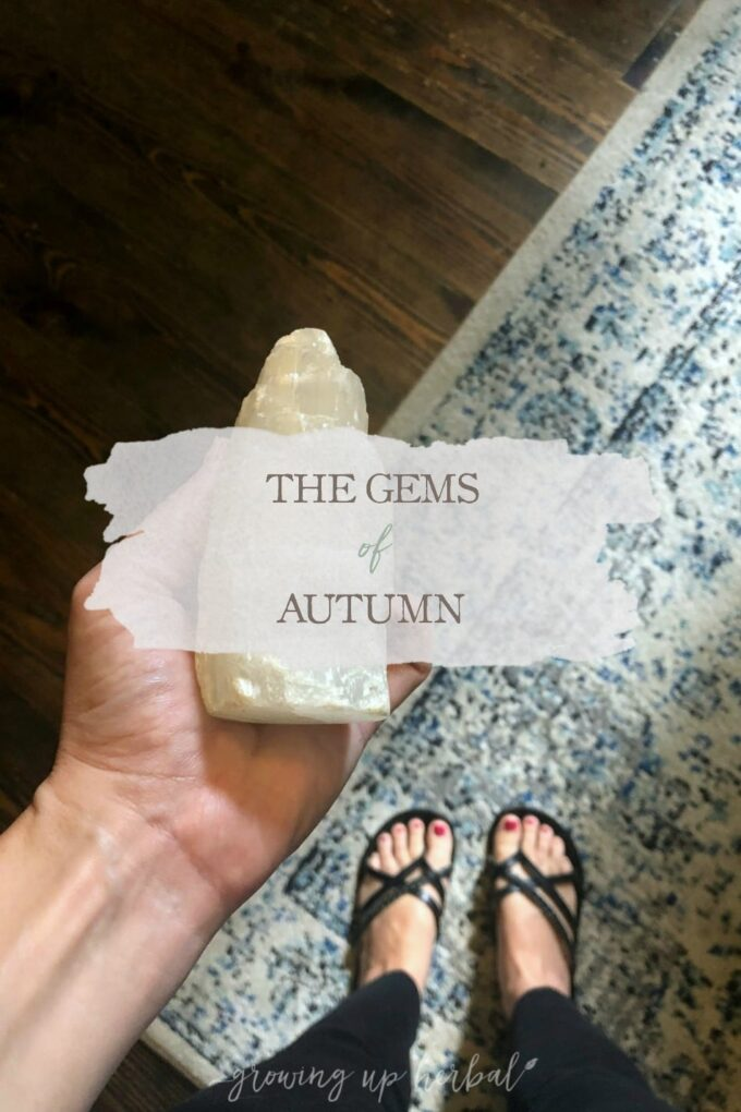 The Gems of Autumn   Growing Up Herbal   The autumn season is here, and October's seasonal living mini magazine will be landing in your inbox soon.