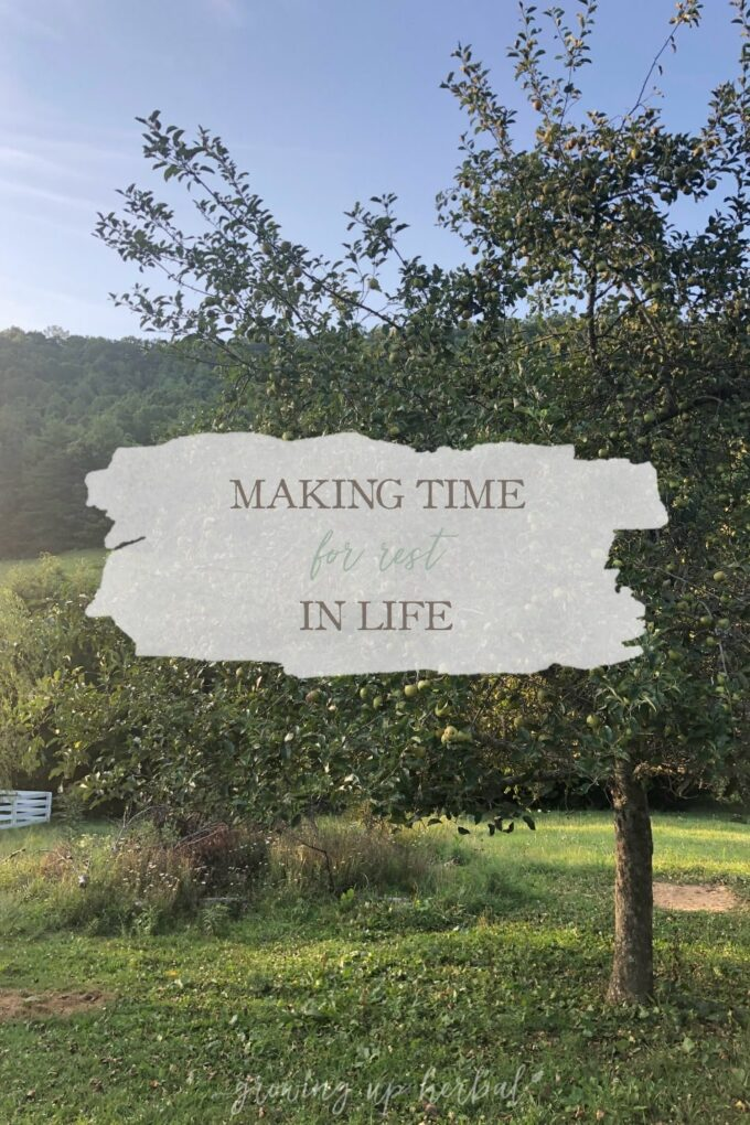 Making Time For Rest In Life | Growing Up Herbal | I've been thinking a lot about rest and how to incorporate more of it into my life in my morning devotions lately. Here's what I'm learning.