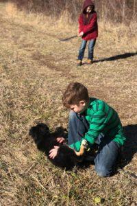 boy rubbing dog's belly