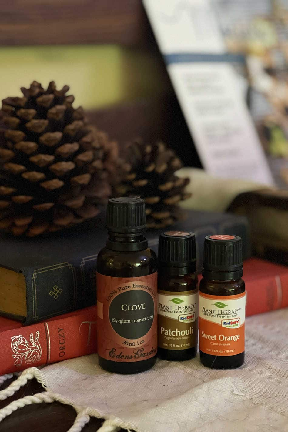 4 Autumn Essential Oil Blends to Give You All the Fall Feelings | Growing Up Herbal | Looking for those fall feelings? If so, here are 4 autumn essential oil blends to add to your diffuser to put you in the fall mood!